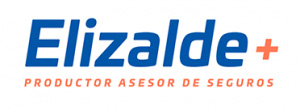 Organización Elizalde